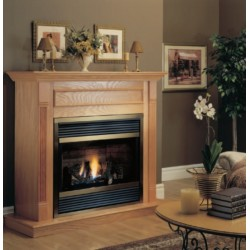 034 - CHIMENEA ESTANCA 39BDVRRP - GAS PROP - MANUAL